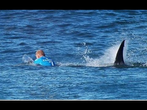 Mick Fanning Shark Attach Documentary
