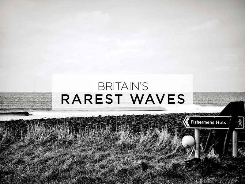 rarest-waves