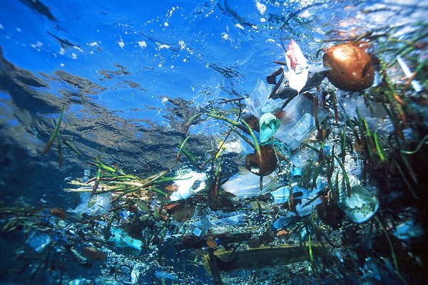 Floating ocean plastic waste
